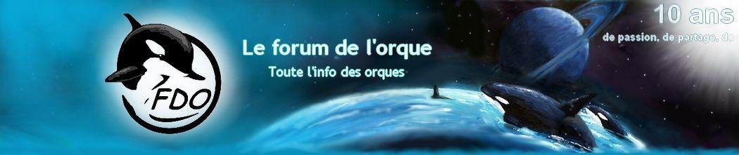 Le forum de l'orque