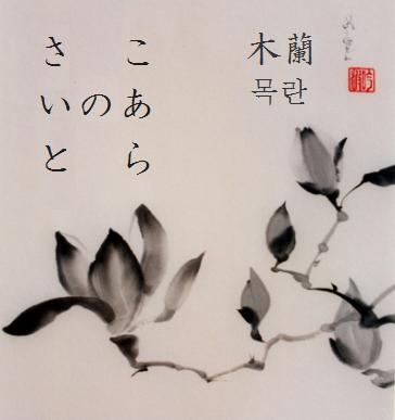 - Koara no saito - ヾ( ^ー^)