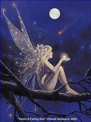 Mon Étoile Filante dans L'écrit de l'ombre starl11
