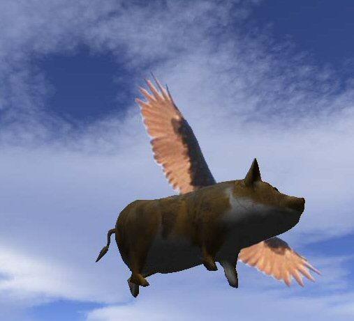flying10.jpg