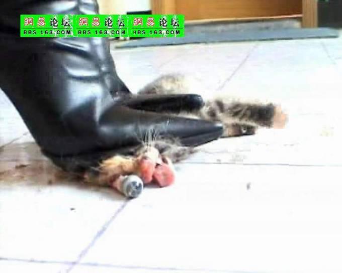 видео девушка убивает каблуками