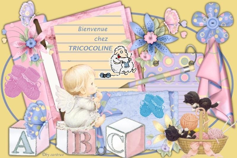 Le monde merveilleux de TRICOCOLINE