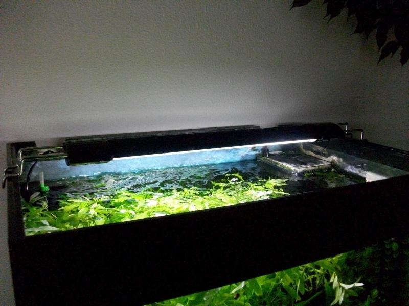 rampe d 39 clairage easy led universal de aquatlantis. Black Bedroom Furniture Sets. Home Design Ideas