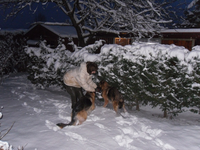 http://i18.servimg.com/u/f18/12/38/01/67/neige_10.jpg