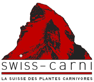 Swiss-Carni