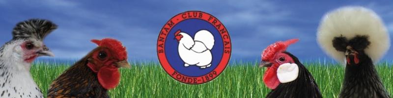 Bantam Club Français