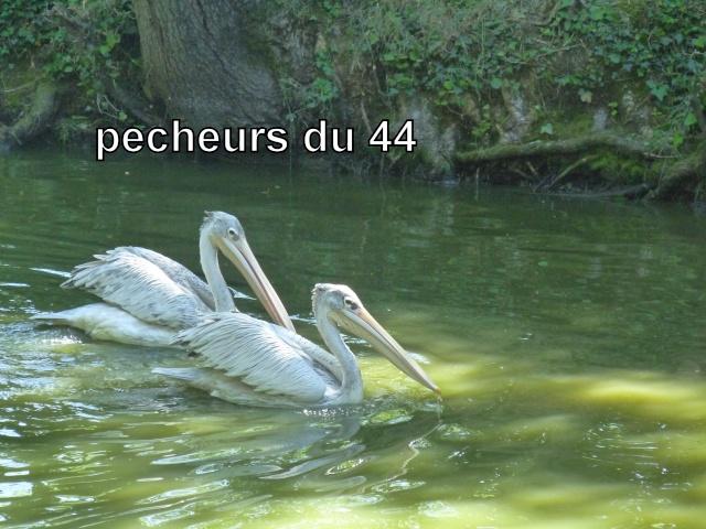 Les pêcheurs du 44