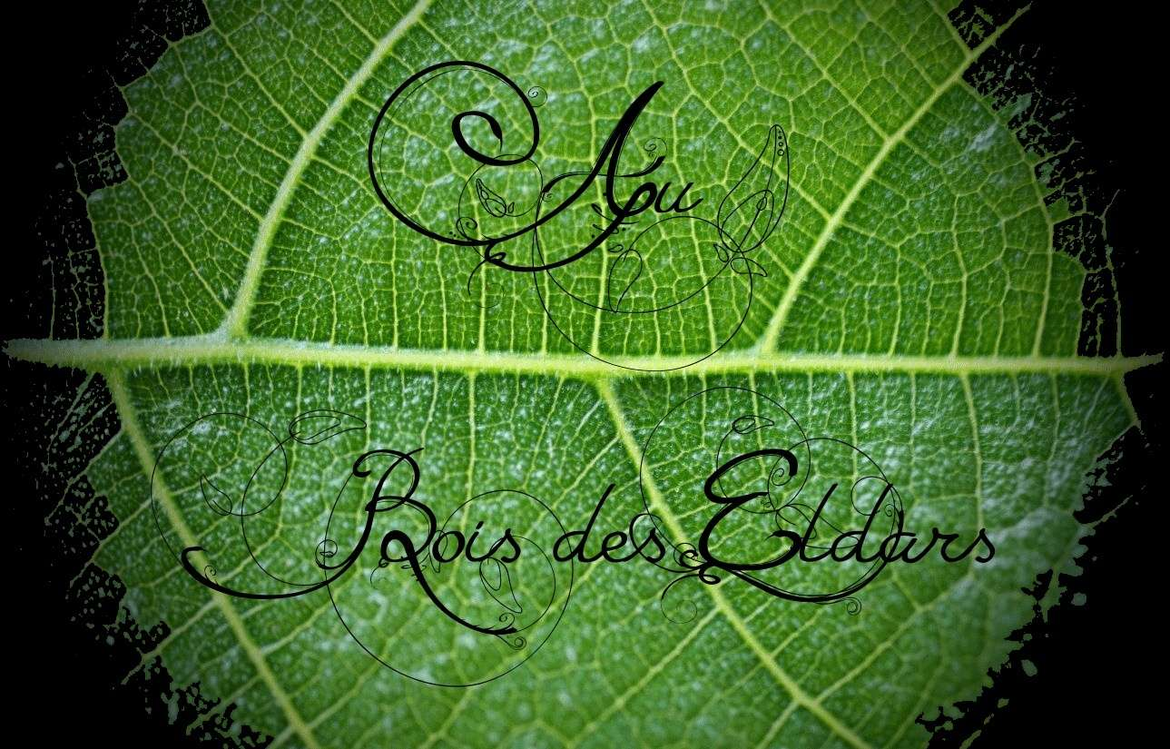 /|\ -----Eldar Lille ----- /|\