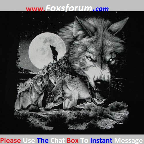 ©-Foxs Forum-©