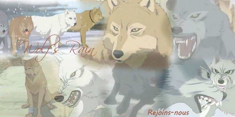 Wolf's Rain RPG