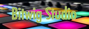 http://i18.servimg.com/u/f18/15/84/40/49/bitwig10.png
