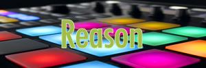 http://i18.servimg.com/u/f18/15/84/40/49/reason10.png
