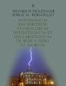 """Le """"Denzinger-Bergoglio"""" !"""