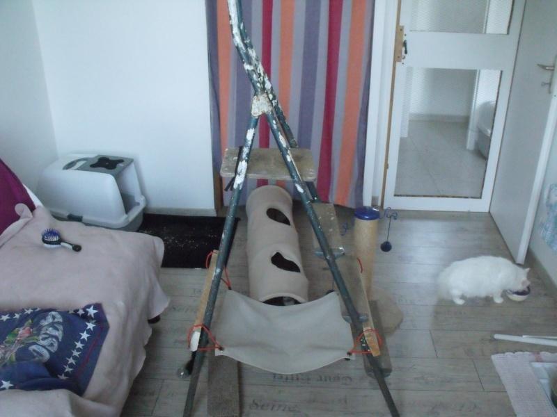 comment faire un arbre a chat arbre a chat fait maison arbre a chat fabrication maison arbre. Black Bedroom Furniture Sets. Home Design Ideas