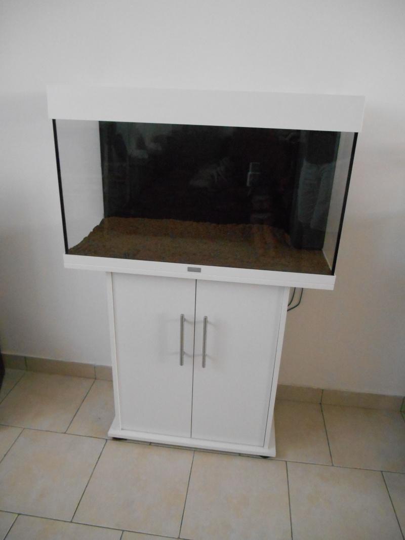 aide pour l installation d un aquarium 120l filtre sol plantes