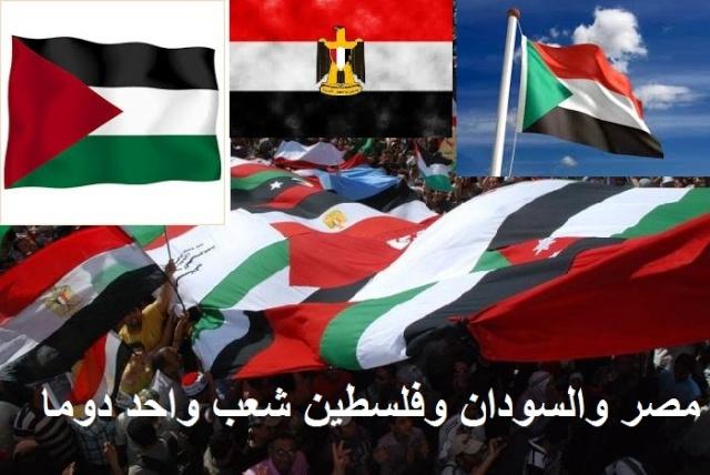 منتديات بنات مصر والسودان وفلسطين