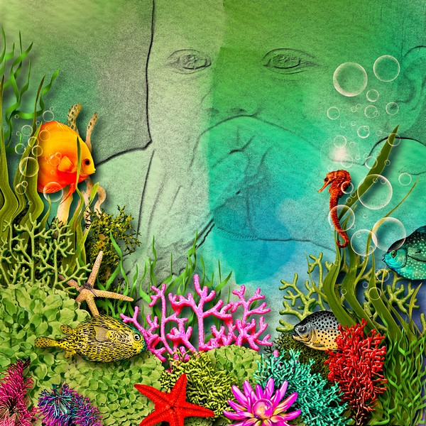 fishes10.jpg