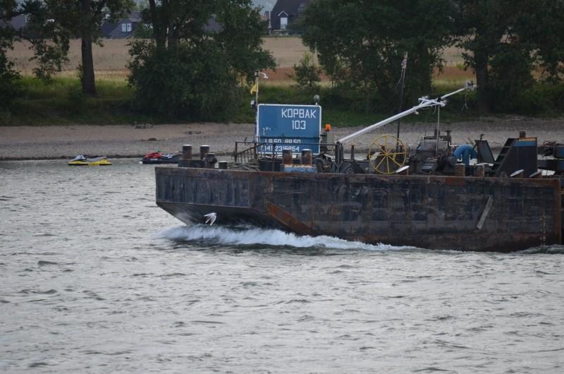 Der Rhein bei Mondorf am 22072015