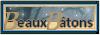 Bannière Beauxbâtons