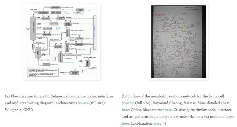 major metabolic pathways and their inadequacy for origin of life this is a familiar exercise for anyone who has had to design lay out etch and then populate and er together an electronics circuit board