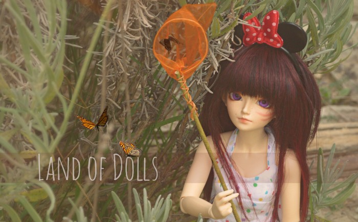Land of Dolls