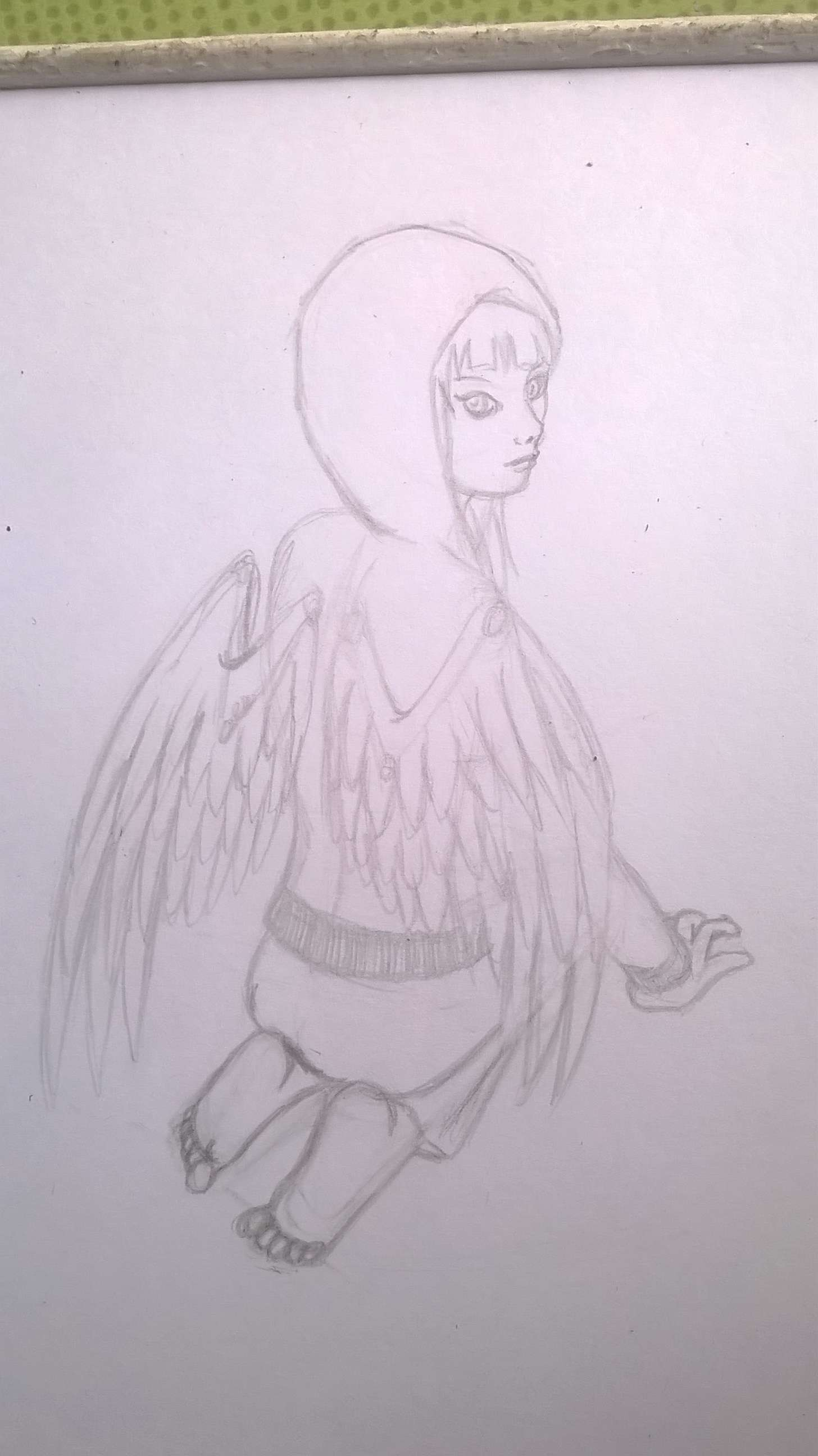 croquis hybride corbeau