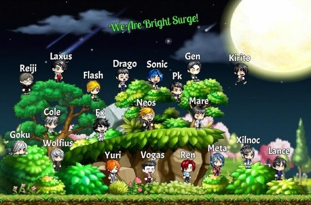 Bright Surge Academy and Team