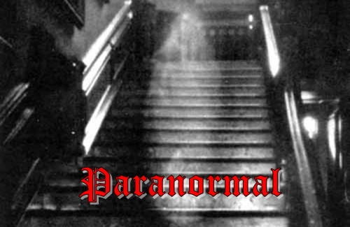Paranormal Life Obscurely
