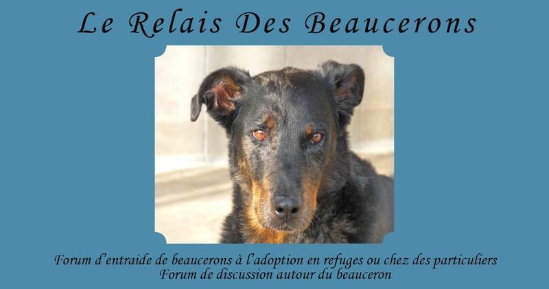 Le Relais Des Beaucerons
