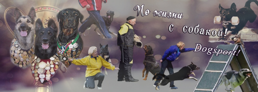 ПО   ЖИЗНИ   С   СОБАКОЙ!  ДРЕССИРОВКА СОБАК В СЕВЕРСКЕ,  DOGSPORT!!!