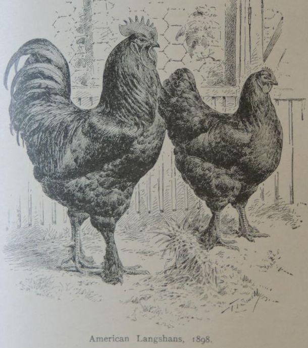 02-18910.jpg