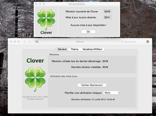 clover14.jpg