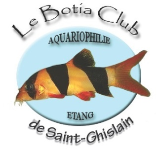 Le Botia Club