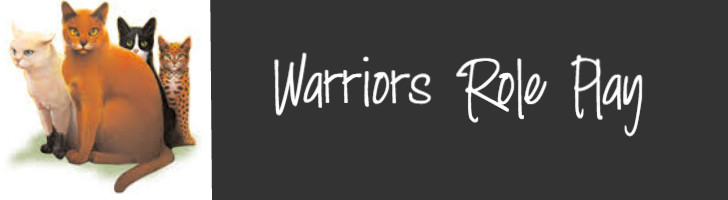Warriors Roleplay