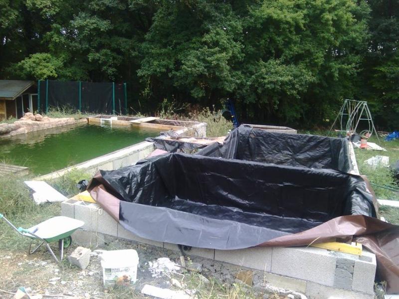 cr ation bassin naturel nage page 27 forum bassin. Black Bedroom Furniture Sets. Home Design Ideas