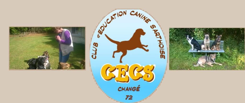 Club d'Education Canine Sarthoise - Portail