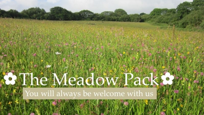 The Meadow Pack