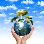 L'environnement dans tous ses états