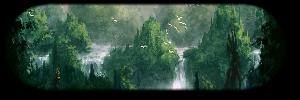 Roh's Amazon