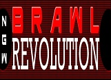 BRAWL Revolution
