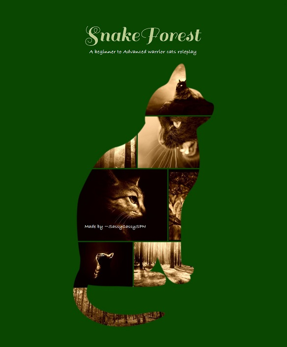 The Snake Forest