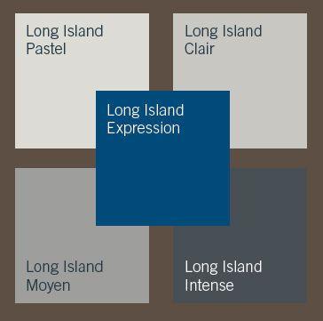 Choix peinture salon for Long island dulux valentine